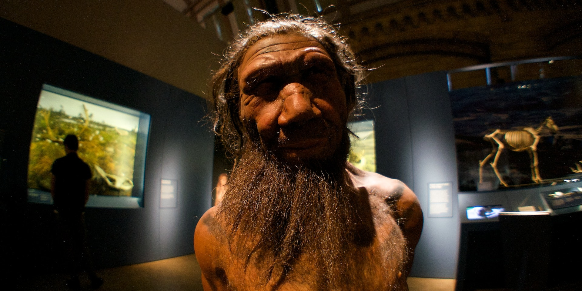 Did Inbreeding Kill the Neanderthals? Experts Say Skeletons Hold Clues