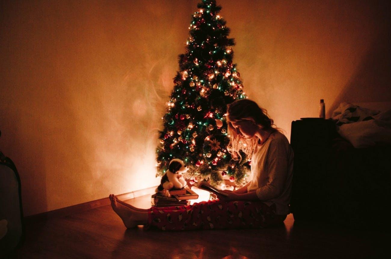 holiday, tree