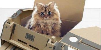 Cat cardboard box