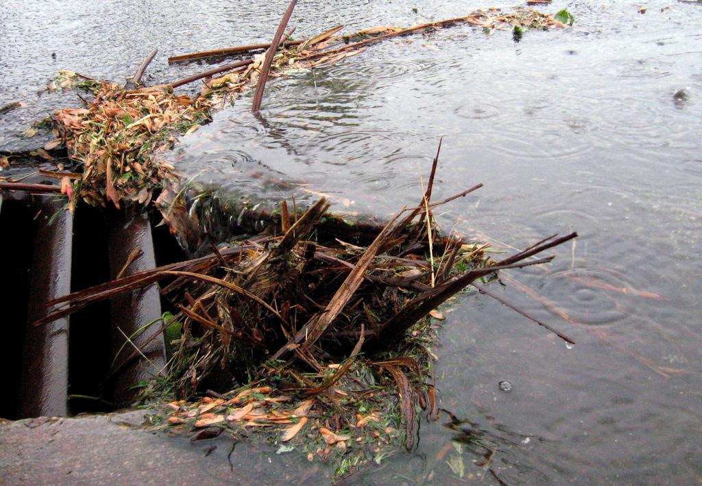 Debris slows rainwater as it enters a storm drain.