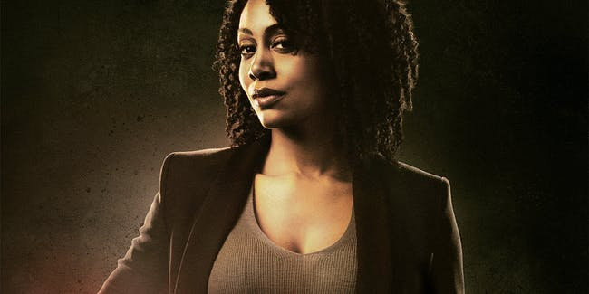 Netflix Misty Knight Luke Cage