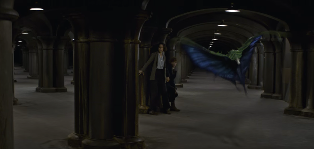 The Swooping Evil in 'Fantastic Beasts and Where to Find Them'