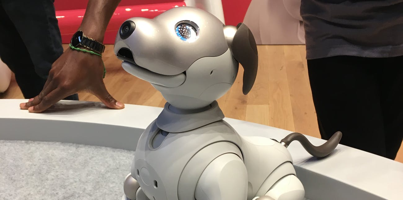 Sony Relaunches Aibo, the $2,899 Robotic Dog With A I