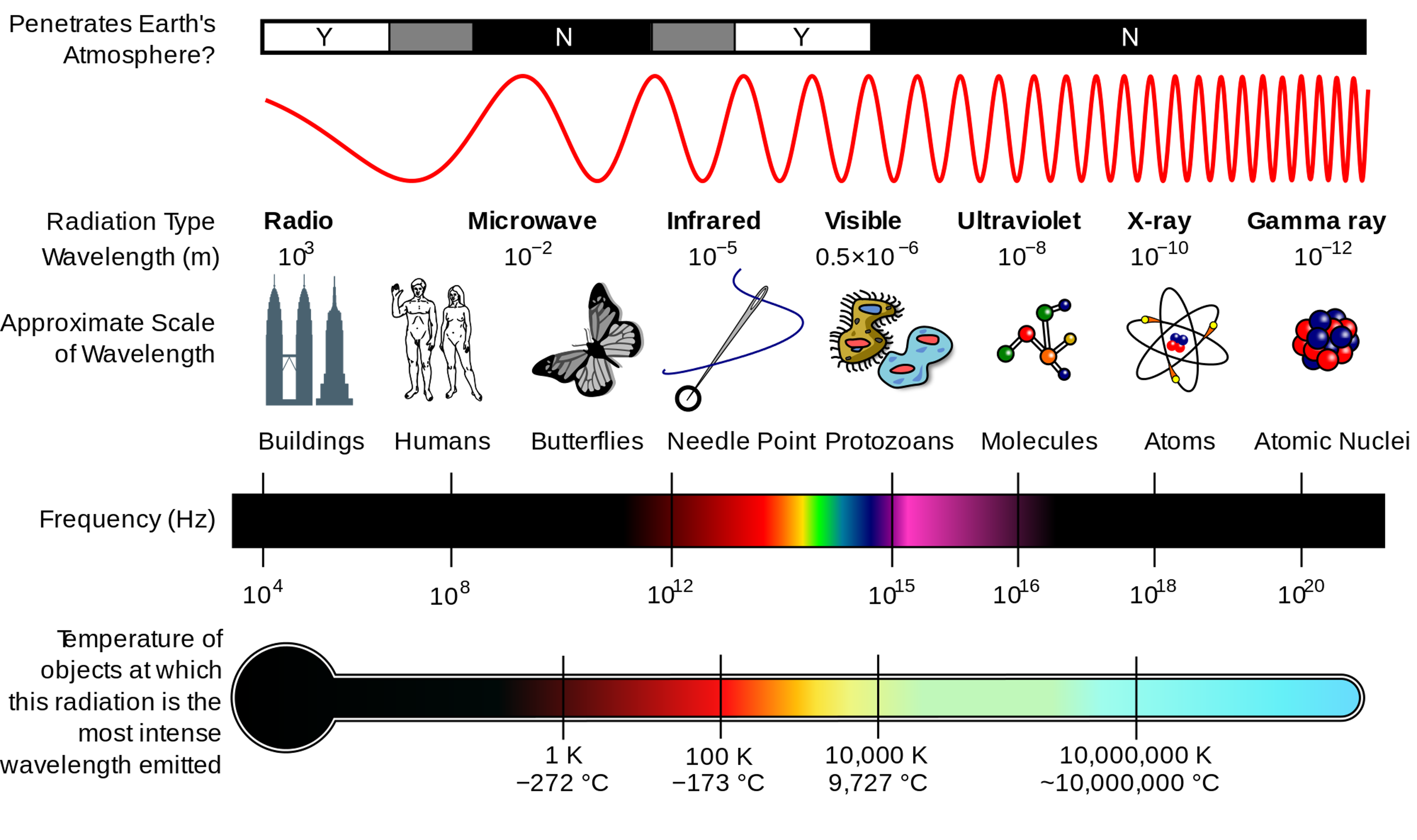 Wifi works closer to the radio and microwave side of the spectrum, while lifi is in the visible light spectrum.
