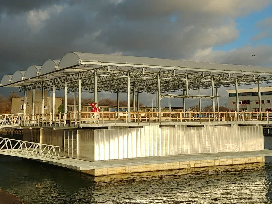 World's First Floating Dairy Farm Uses Solar and EVs to Fight Climate Change