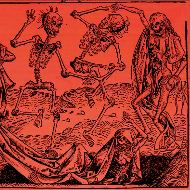 New Study Finds Fleas From Humans Not Rats Spread The Black Death