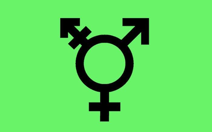 gender neutral flag