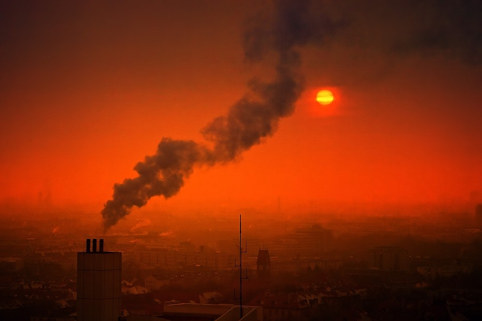 effects of smog on the environment