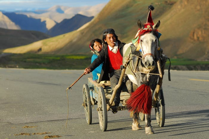 A family travels by horse-drawn cart in Tibet.