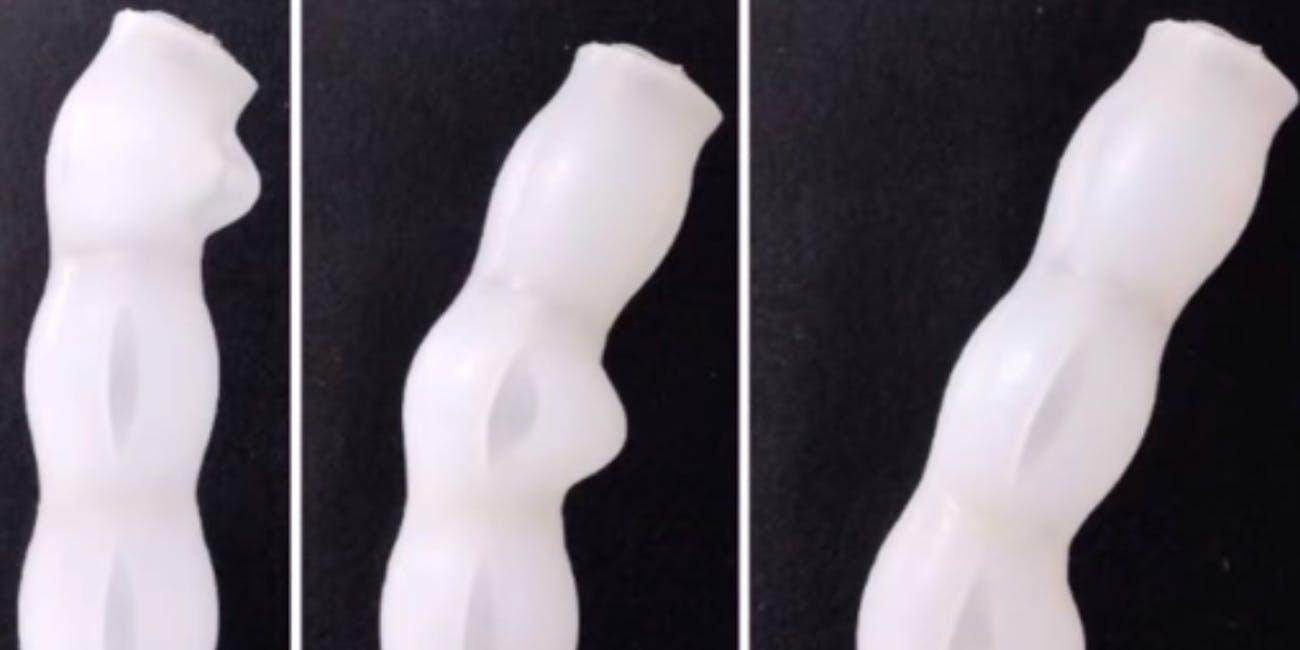 medical robot worm anus butt colonoscopy