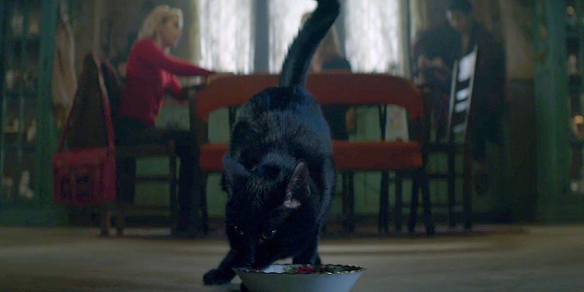 Sabrina Renewed For Season 3 And 4 Watch Salem The Cat