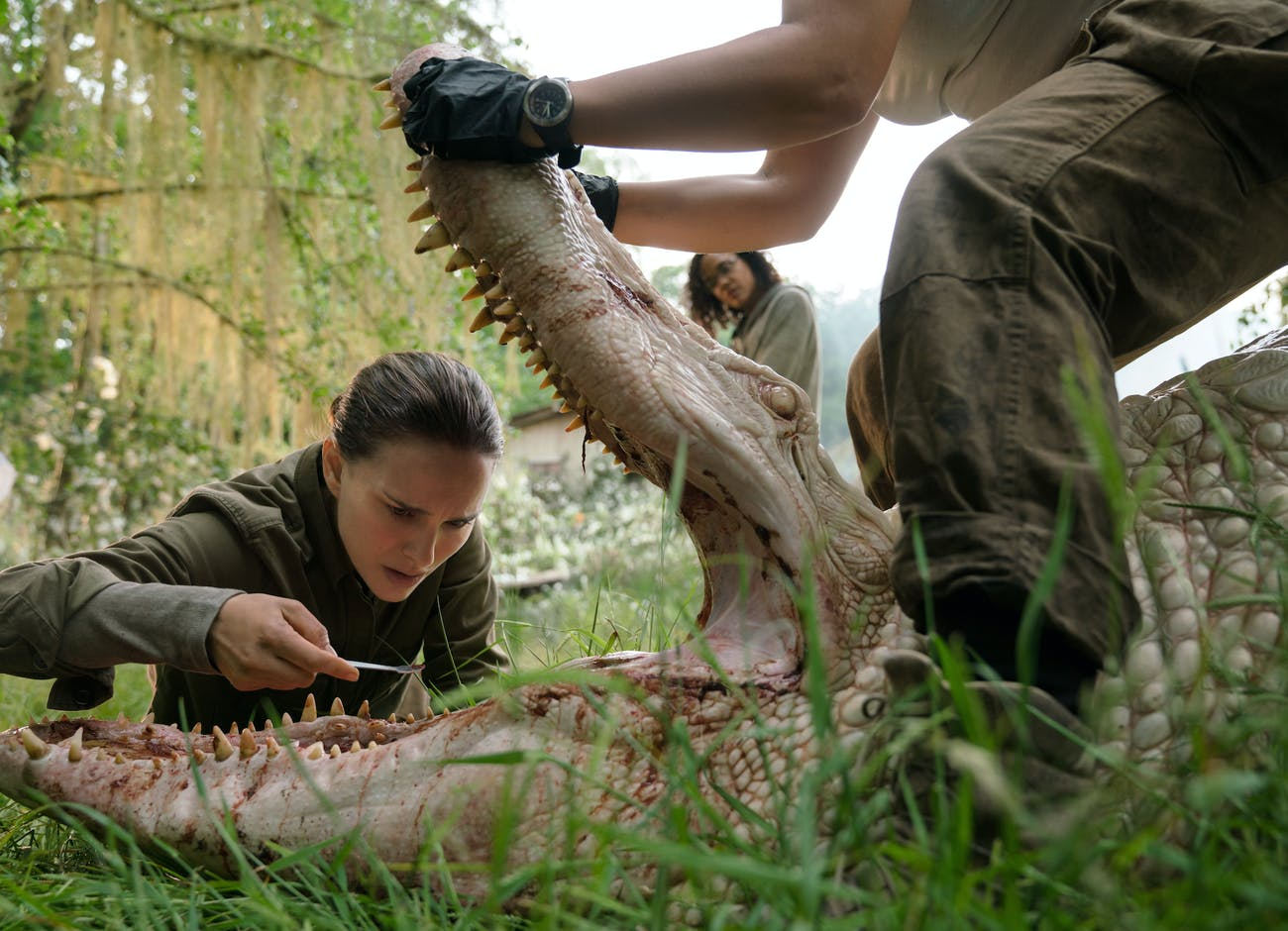The first creature to threaten the team is an albino gator with shark's teeth.