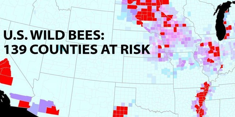 A new study of wild bees identifies 139 counties in key agricultural regions of California, the Pacific Northwest, the Midwest, west Texas and the Mississippi River valley that face a worrisome mismatch between falling wild bee supply and rising crop pollination demand. Credit: PNAS