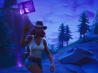'Fortnite' Calamity Shadow Stone