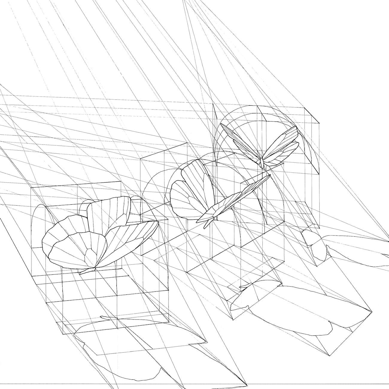 Rafael Araujo Draws Perfect Illustrations By Hand Using