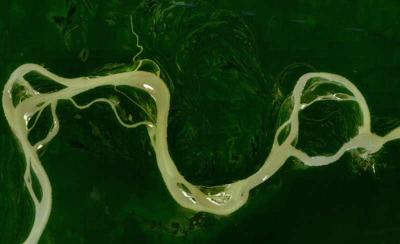 The Amazon River from above