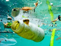 microplastics health
