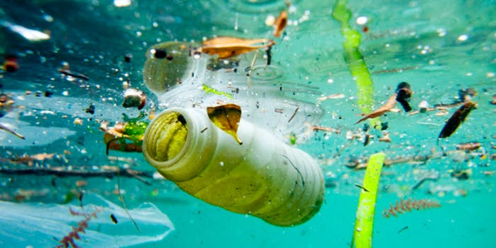 microplastics health
