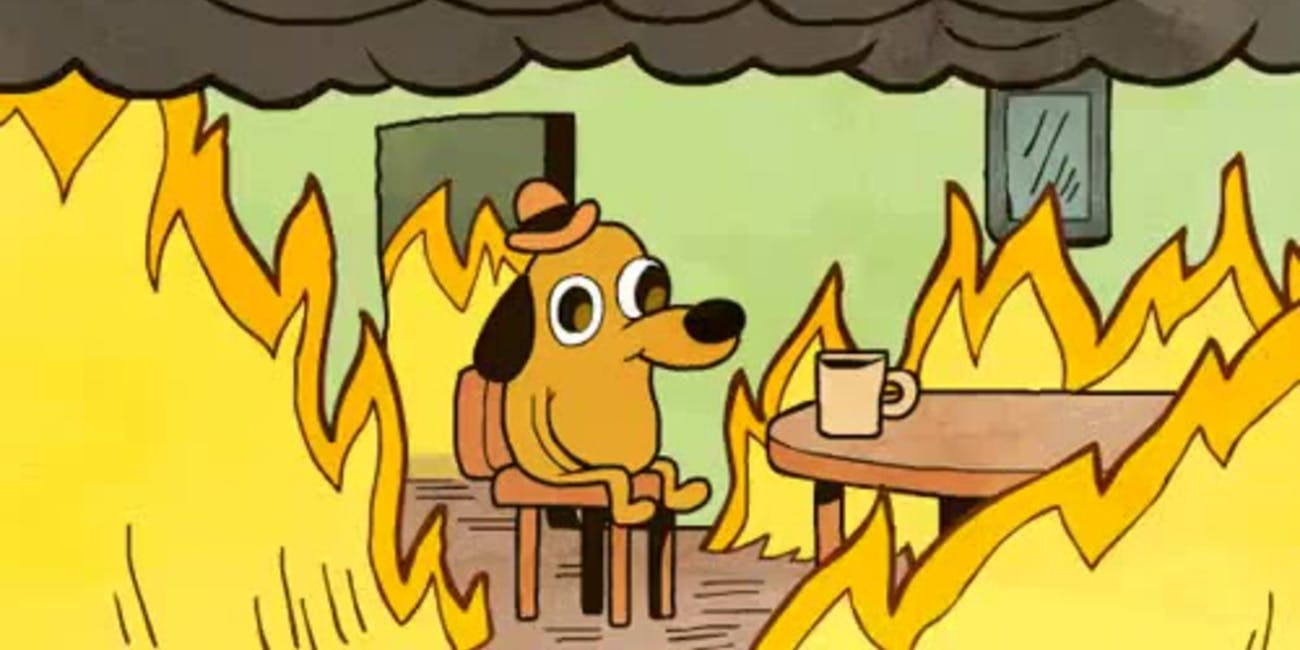 k c green s this is fine dog is no longer fine still on fire