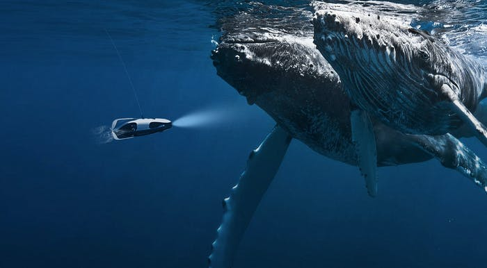 powerray power ray powervision whale drone scuba VR