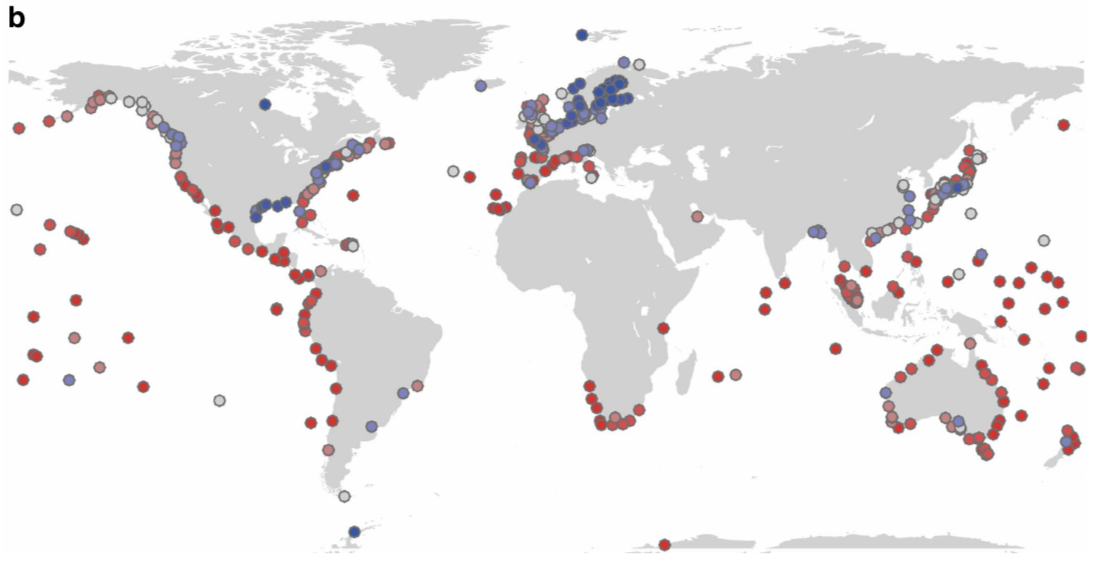 Climate Change Map Shows Where Huge Floods Will Be Normal By - Sea level rise map 2050