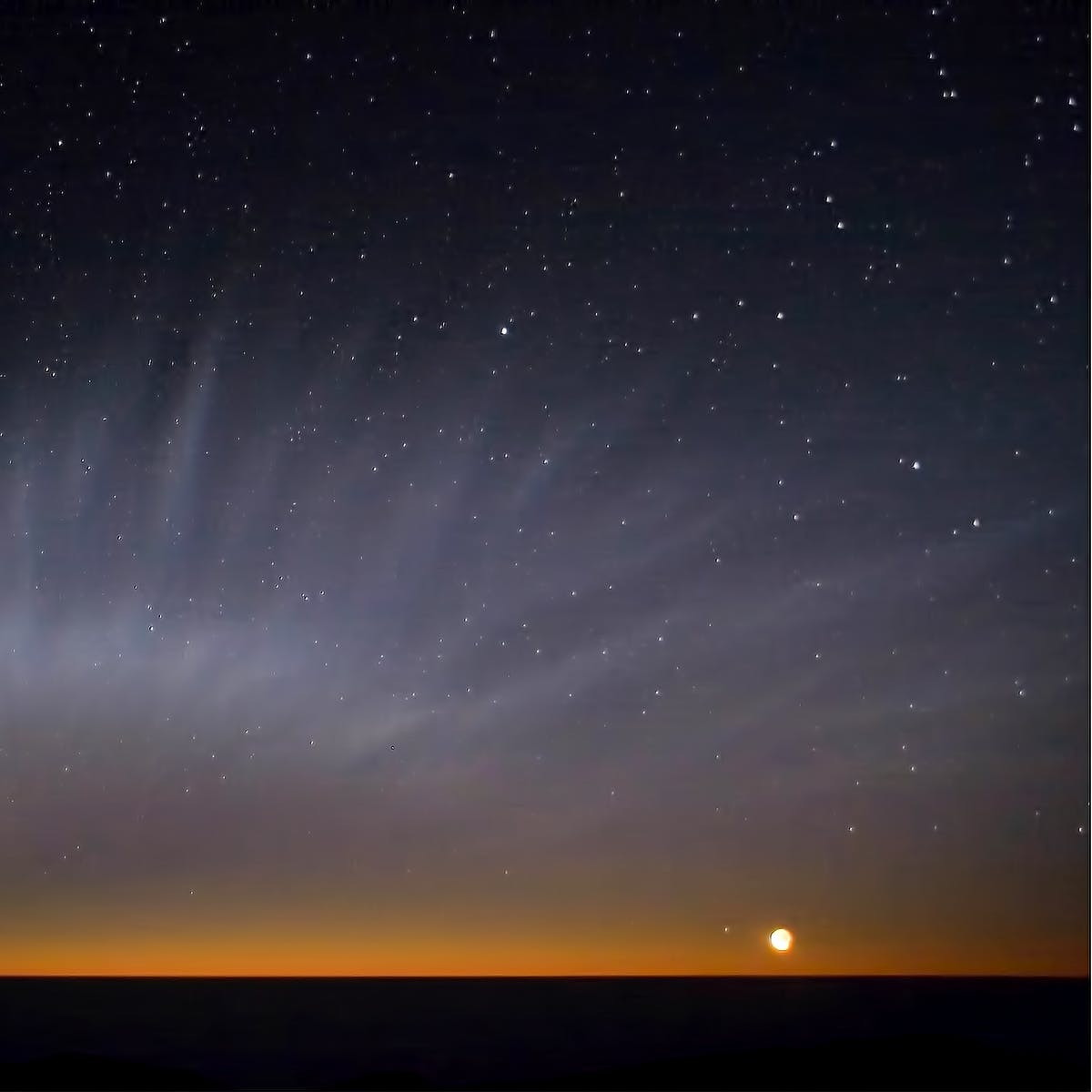 "NASA Video Reveals ""Weird Goings-On"" in Tail of Elusive Comet McNaught"