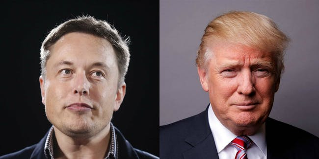 Elon Musk and Donald Trump