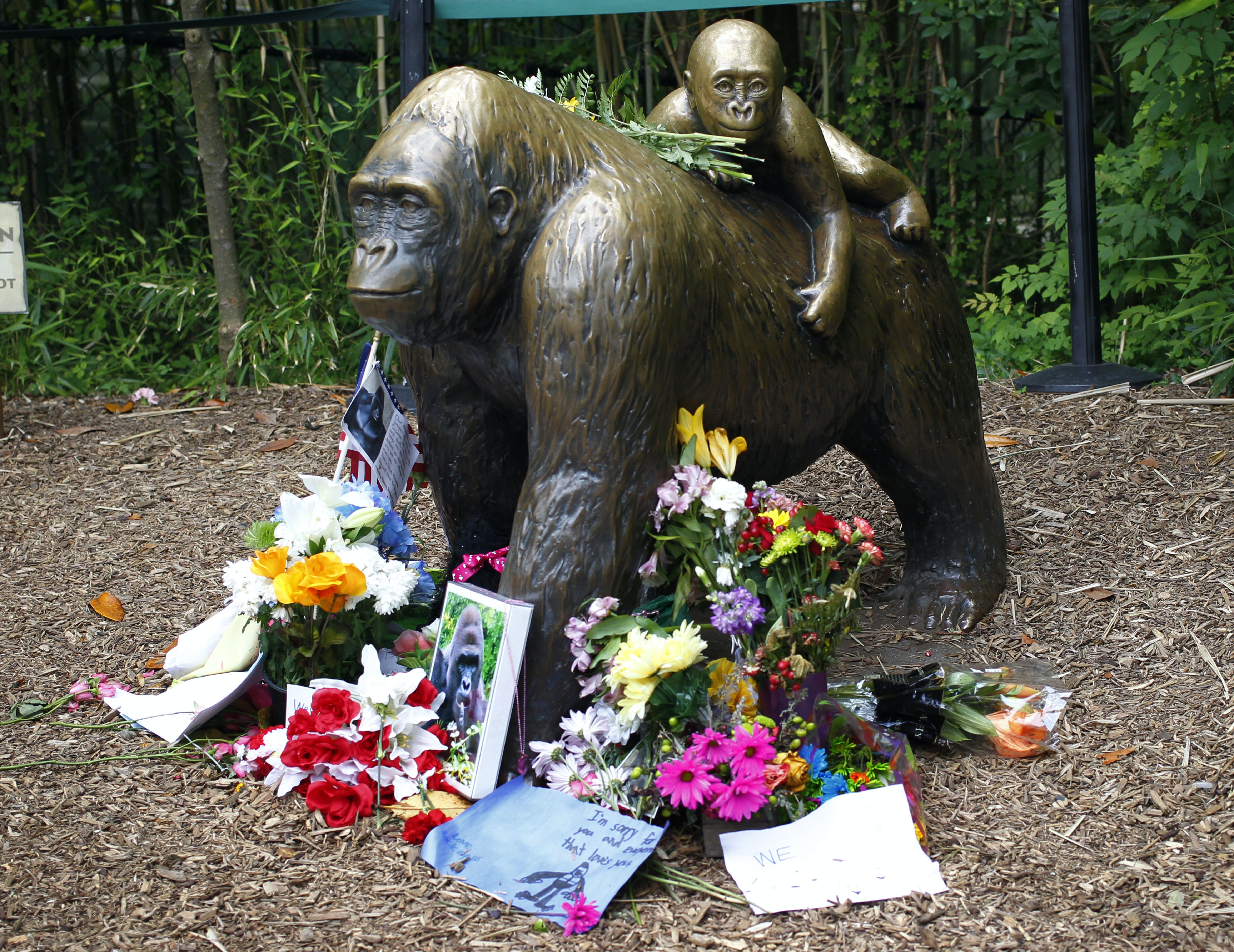 Flowers lay around a bronze statue of a gorilla and her baby outside the Cincinnati Zoo's Gorilla World exhibit days after a 3-year-old boy fell into the moat and officials were forced to kill Harambe, a 17-year-old Western lowland silverback gorilla June 2.