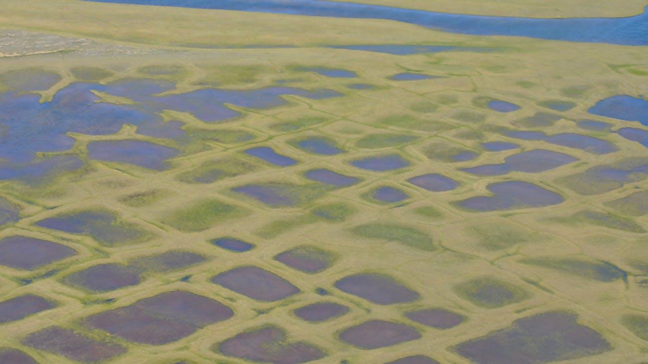 browning lakes