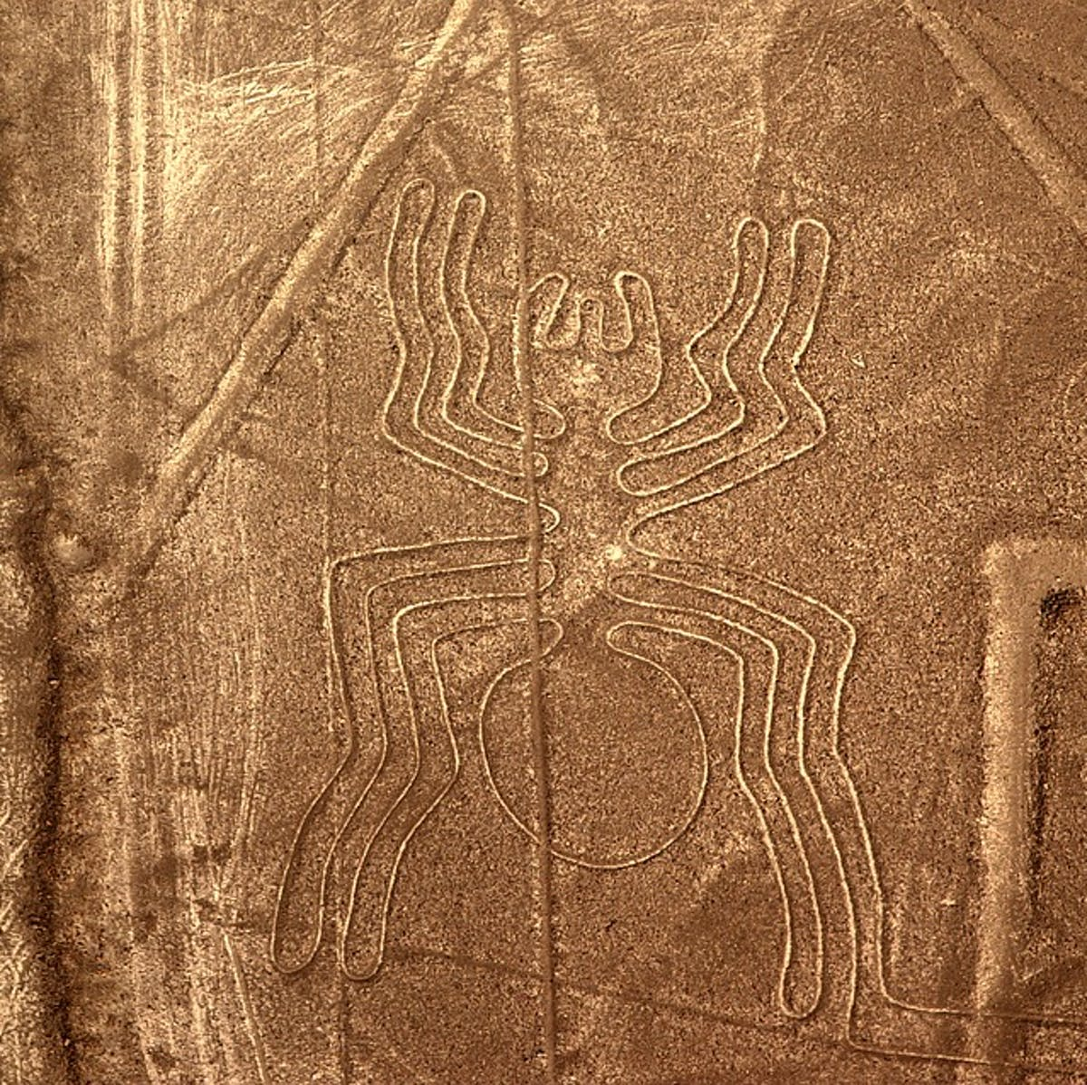 Nazca lines mystery: Giant birds may help scientists finally solve it