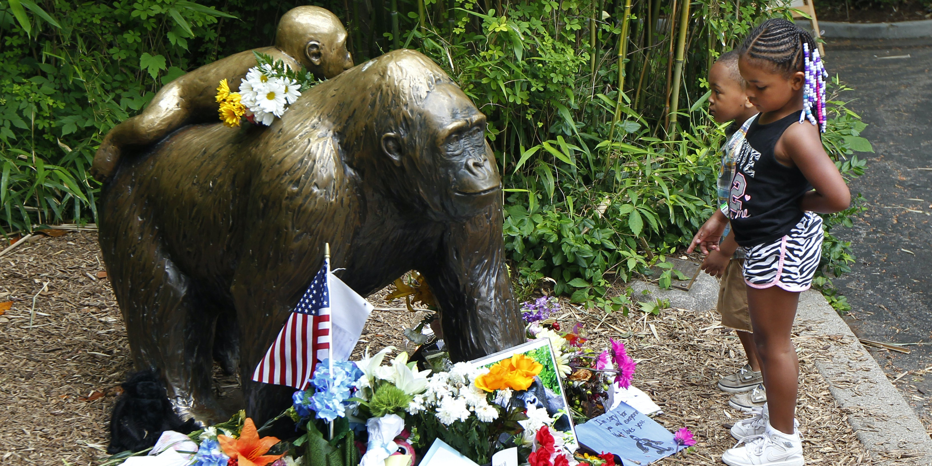 CINCINNATI, OH - JUNE 2:  Visitors view a bronze statue of a gorilla and her baby surrounded by flowers outside the Cincinnati Zoo 's Gorilla World exhibit days after a 3-year-old boy fell into the moat and officials were forced to kill Harambe, a 17-year-old Western lowland silverback gorilla June 2, 2016 in Cincinnati, Ohio. The exhibit is still closed as zoo officials work to upgrade safety features of the exhibit.  (Photo by John Sommers II/Getty Images)