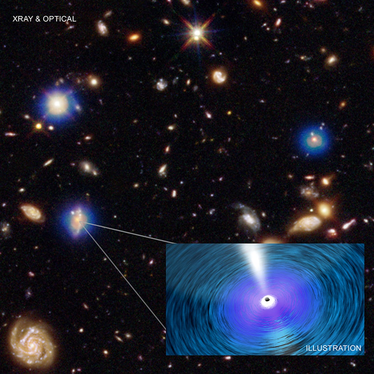 Chandra X-ray Observatory's Deep Field South
