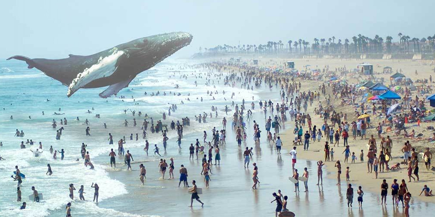 The 9 Craziest Job Openings at Magic Leap