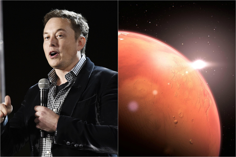 Elon Musk Confirms New Tesla Autopilot Update Coming Next Week