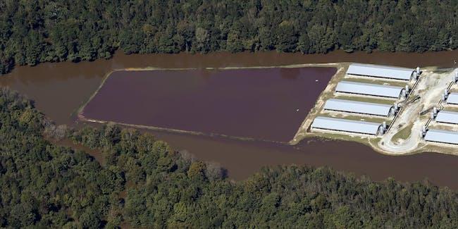 В атлантике бушуют ураганы... Hog-sewage-lagoon-hurricane-matthew-flooding-north-carolina