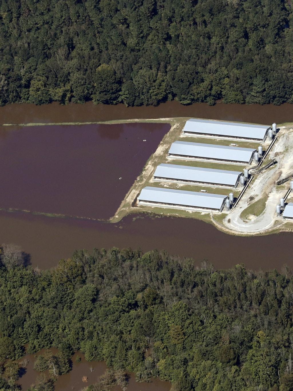 Hog sewage lagoon Hurricane Matthew flooding North Carolina