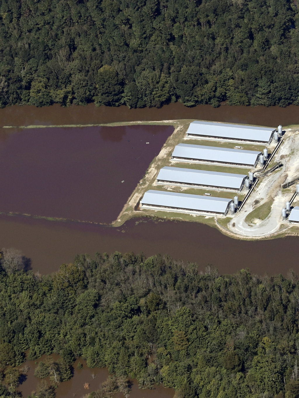 Hog sewage lagoon Hurricane Matthew flooding North Carolina
