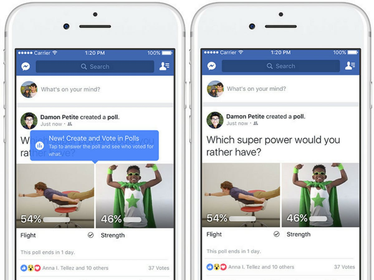 Are Facebook's New Polls Anonymous? The Feature Rolled Out
