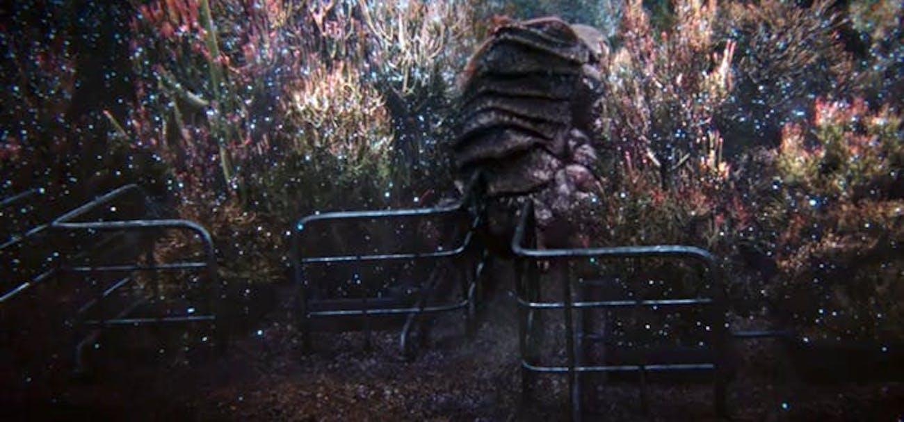 tardigrade star trek discovery