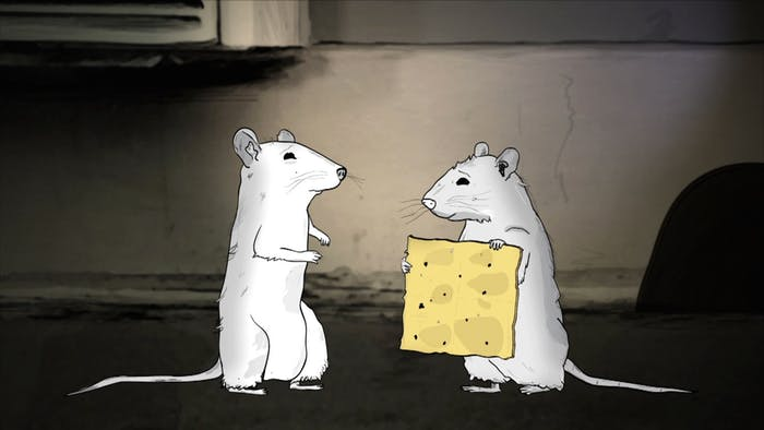 Rats on HBO's 'Animals'