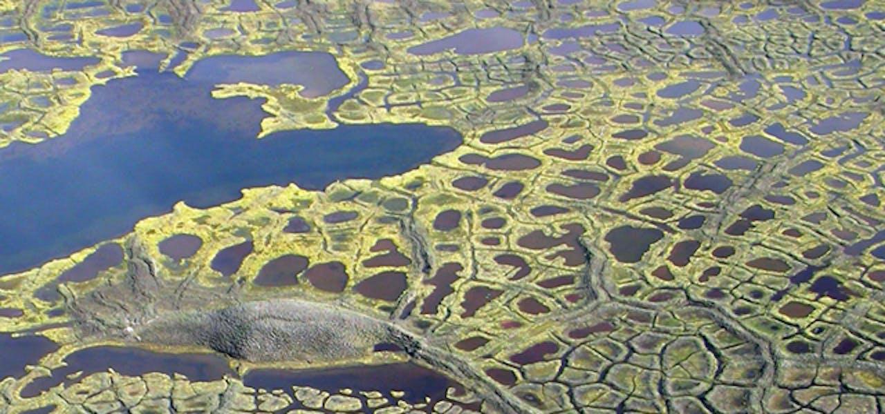 browning arctic lakes