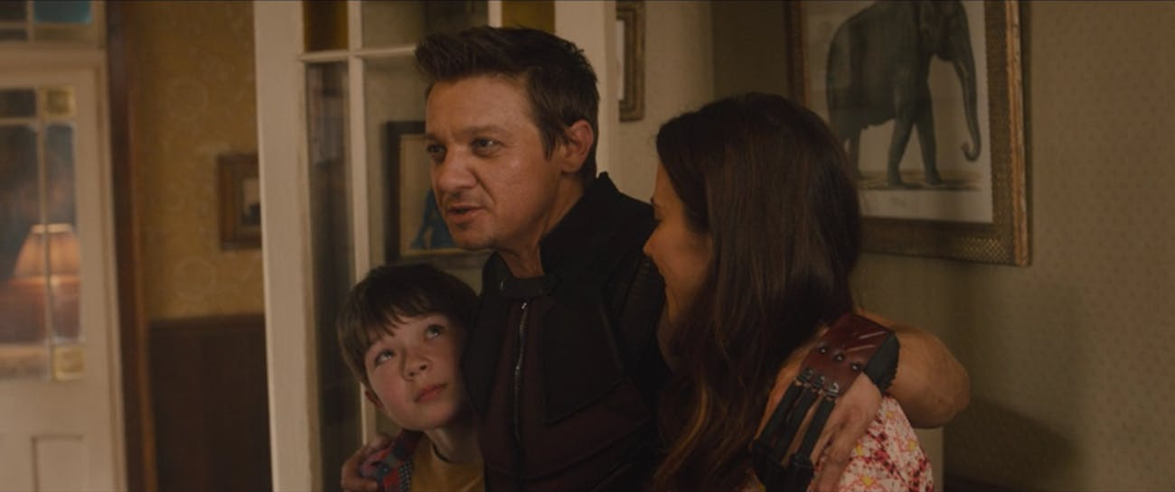 Image result for hawkeye family