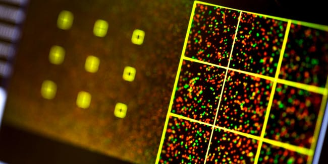 synthetic dna research science cybersecurity