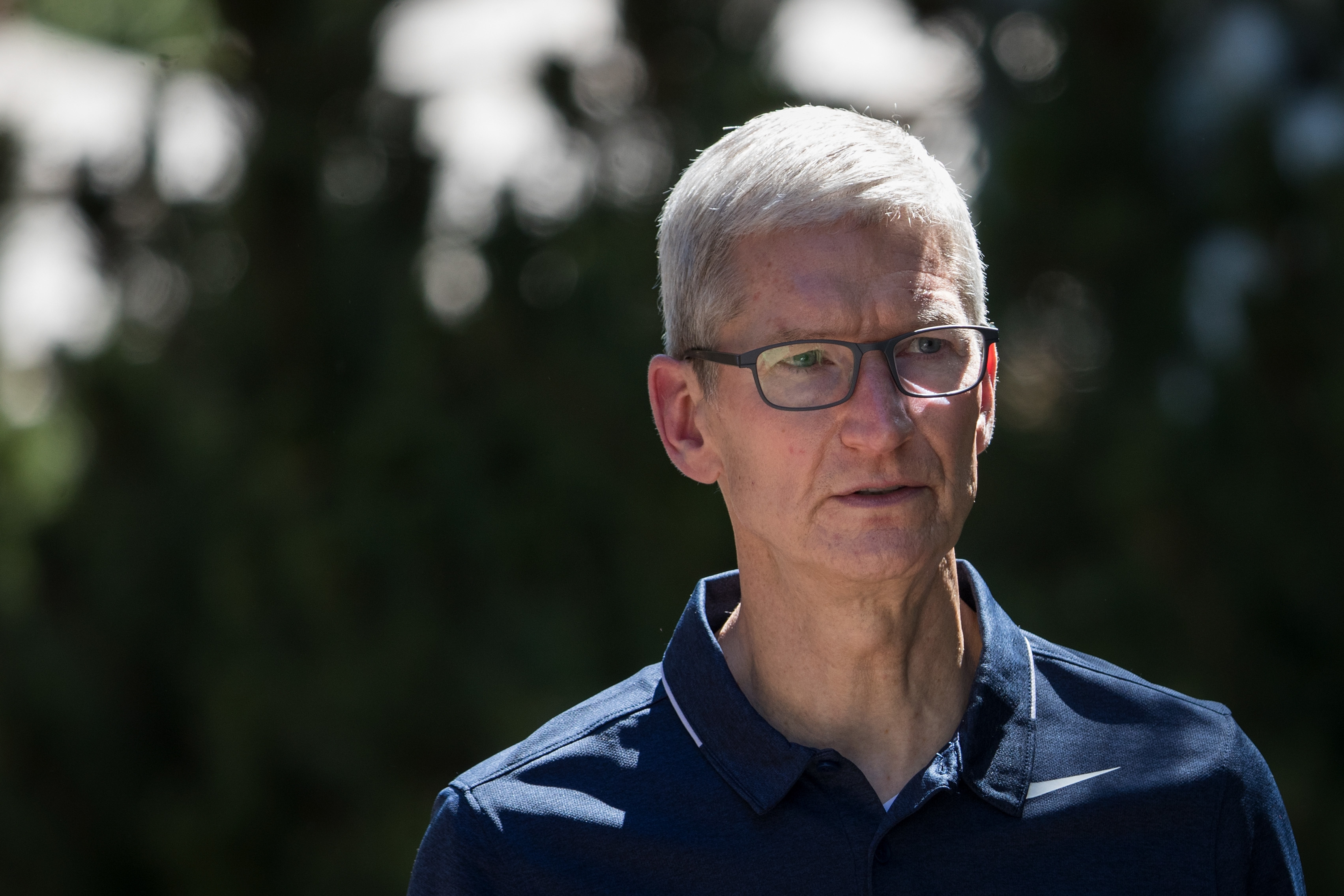 Thrilled by the response apple ceo tim cook said in a tweet that it - Tim Cook Describes Apple Car As The Mother Of All A I Projects Inverse