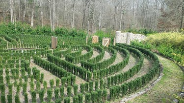 Can the Internet Save the Hedge Maze of 'S-Town'?