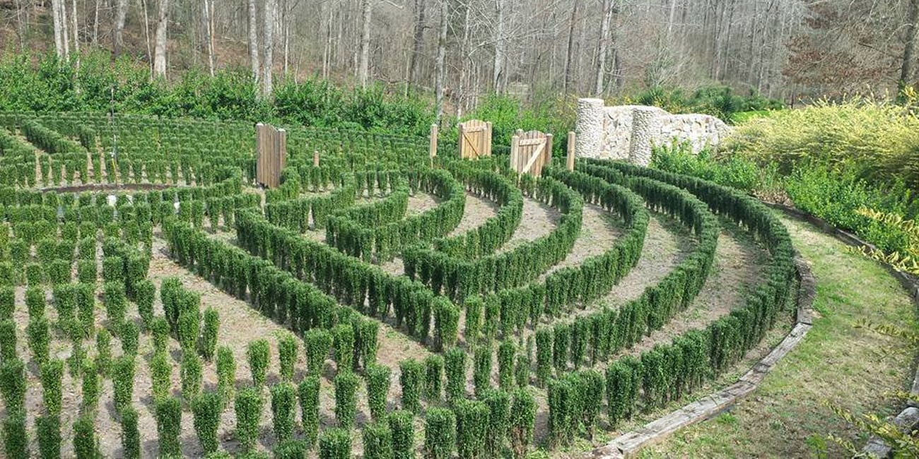 Can The Internet Save John B Mclemore S Hedge Maze From S Town