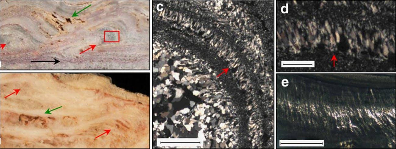 microbial palisades Pilbara western austriala