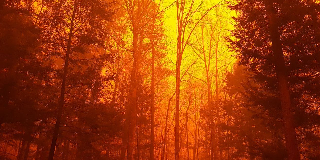 great smoky mountains fire