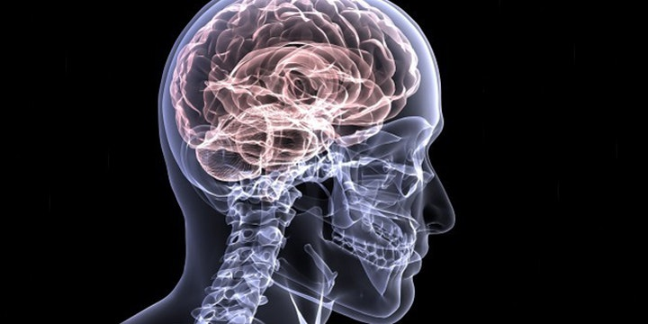 Scientists Successfully Dulled Traumatic Memories Using an Anesthetic