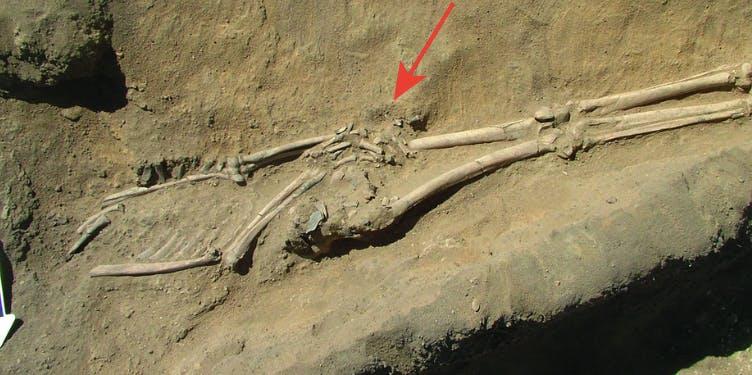 The unfortunate corpse.